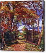 Autumn Leaf Road Acrylic Print