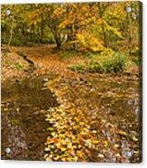 Autumn Leaves In Burn Vertical Acrylic Print
