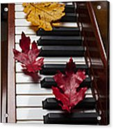 Autumn Leaves On Piano Acrylic Print by Garry Gay