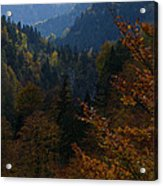 Autumn Magic - Austria Acrylic Print