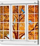 Autumn Maple Tree View Through A White Picture Window Frame Acrylic Print