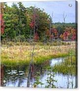 Autumn Marsh Acrylic Print