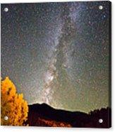 Autumn Milky Way Night Sky  Acrylic Print by James BO  Insogna