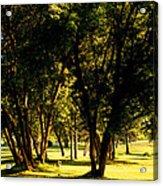 Autumn Morning Stroll Acrylic Print