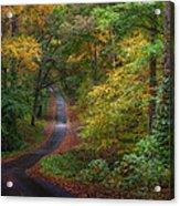 Autumn Mountain Road Acrylic Print by William Schmid