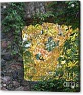 Autumn Naturally Framed Acrylic Print