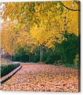 Autumn - New York City - Fort Tryon Park Acrylic Print