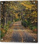 Autumn On Bike Trail  Acrylic Print