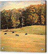 Autumn On The Farm Acrylic Print