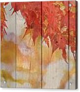 Autumn Outdoors 2 Of 2 Acrylic Print