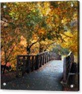 Autumn Overpass Acrylic Print