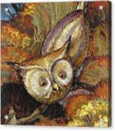 Autumn Owl Acrylic Print