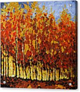 Autumn Palette Acrylic Print by Vickie Warner