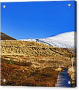 Autumn Panorama In Cairngorms National Park With Cairn Gorm Scotland Acrylic Print