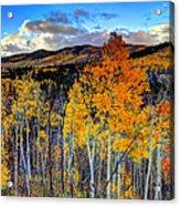 Autumn Pass Acrylic Print