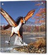Autumn Pegasus Acrylic Print