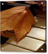 Autumn Piano 12 Acrylic Print