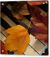 Autumn Piano 2 Acrylic Print