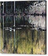 Autumn Pond Acrylic Print
