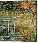 Autumn Pond Scene Acrylic Print