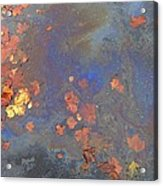 Autumn Puddle Acrylic Print