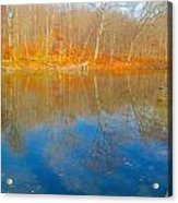 Autumn Reflection 2 Acrylic Print