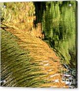 Autumn Reflections 2 Acrylic Print