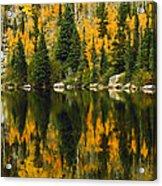 Autumn Reflections At Bear Lake Acrylic Print