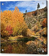 Autumn Reflections In The Susan River Canyon Acrylic Print