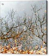 Autumn Reflections On Alloway Lake Nj Acrylic Print