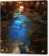 Autumn Reflections On The Tributary Acrylic Print