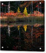 Autumn Reflections - Red Eagle Pond Acrylic Print by Thomas Schoeller