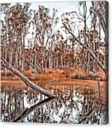 Autumn Reflections V2 Acrylic Print