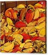 Autumn Remains 2 Acrylic Print