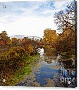 Autumn Remnants Acrylic Print