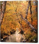 Autumn Riches 1 Acrylic Print