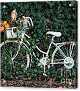 Autumn Ride Acrylic Print