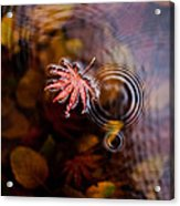 Autumn Ripples Acrylic Print by Mike Reid