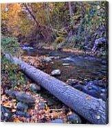 Genil River Acrylic Print