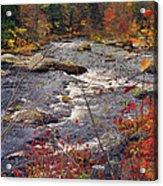 Autumn River Acrylic Print by Joann Vitali