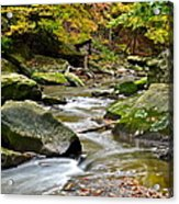 Autumn River Acrylic Print