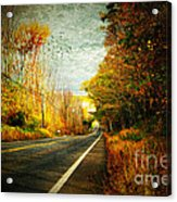 Autumn Road Connecticut Usa Acrylic Print