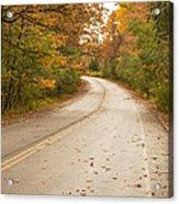 Autumn Road II Acrylic Print