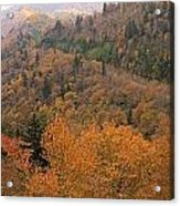 Autumn Roads Acrylic Print