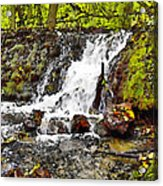 Autumn Scene With Waterfall In Forest Acrylic Print