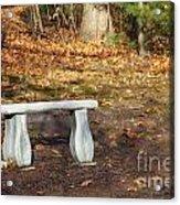 Autumn Seat Acrylic Print