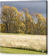 Autumn Skies Canaan Valley Of West Virginia Acrylic Print
