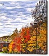 Autumn Sky Acrylic Print