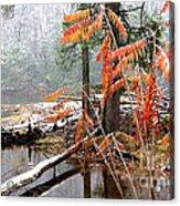 Autumn Snow Cranberry River Acrylic Print