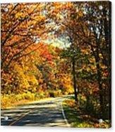 Autumn Splendor Acrylic Print by Candice Trimble